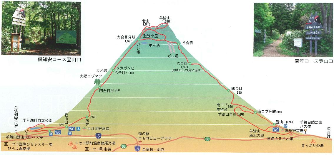 倶知安コース、真狩コース